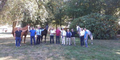 I cavalli dell'Isola spopolano in Francia: tutto sardo il podio a 'Pompadour 2019'