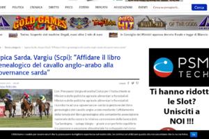 """Ippica Sarda. Vargiu (Scpi): """"Affidare il libro genealogico del cavallo anglo-arabo alla governance sarda"""""""