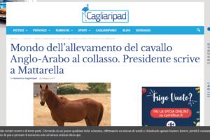 Mondo dell'allevamento del cavallo Anglo-Arabo al collasso. Presidente scrive a Mattarella