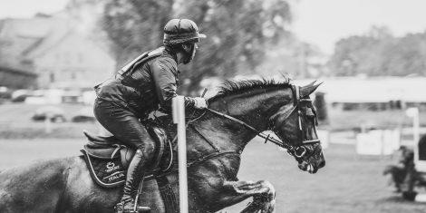 Partecipazione di cavalli sardi ad eventi ippici e sportivi